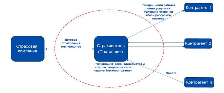 Экспорт товаров, схема страхования